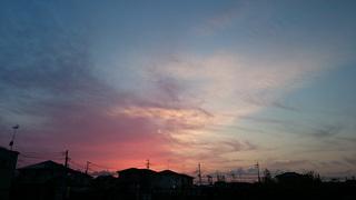20160507-DSC_1524.jpg
