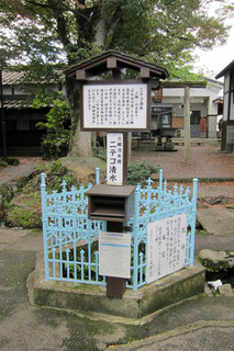 Akita_10.jpg